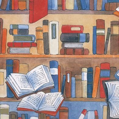 Geschenkpapier Librairie 40261